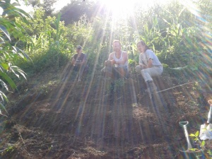 Organic vegetable plot project with Raleigh International, Nicaragua 2013.