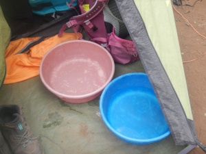 Bowls for 'washy washy'.