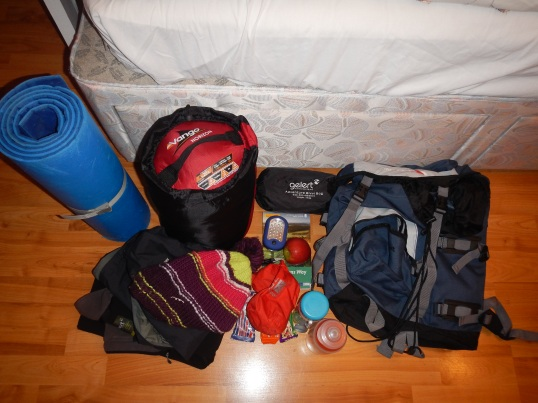 Bivvy bag, roll mat, sleeping bag, jumper, snacks, torch, wooly hat = thats all you need :)